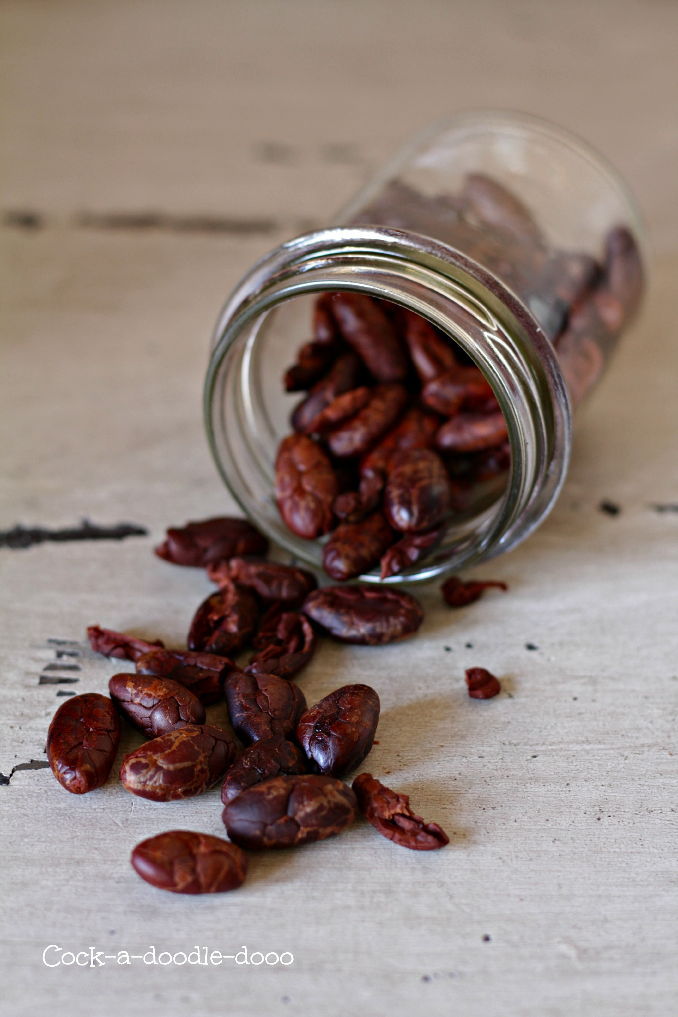 fave di cacao